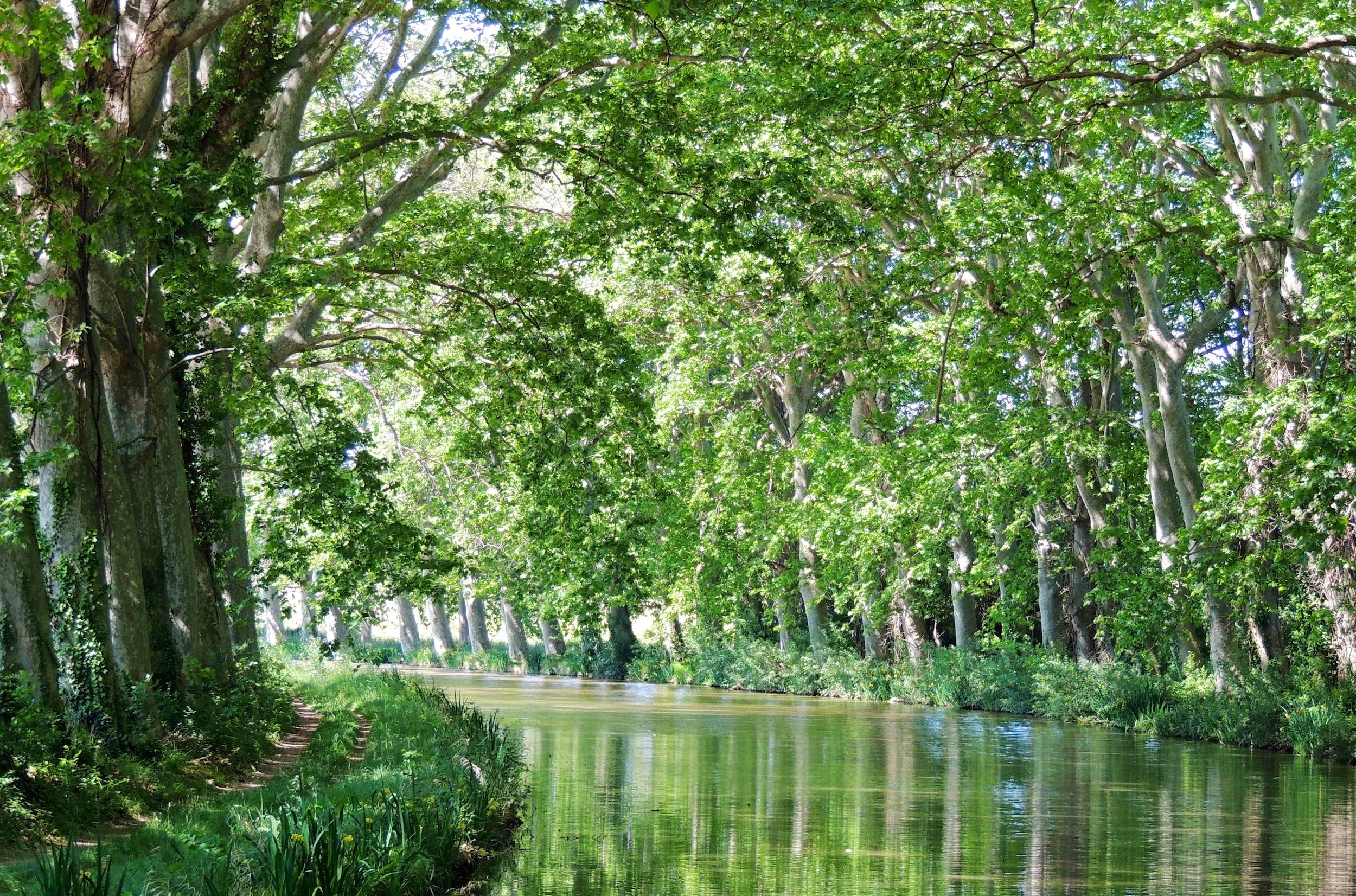 European Waterways Destinations Canal Du Midi.jpg