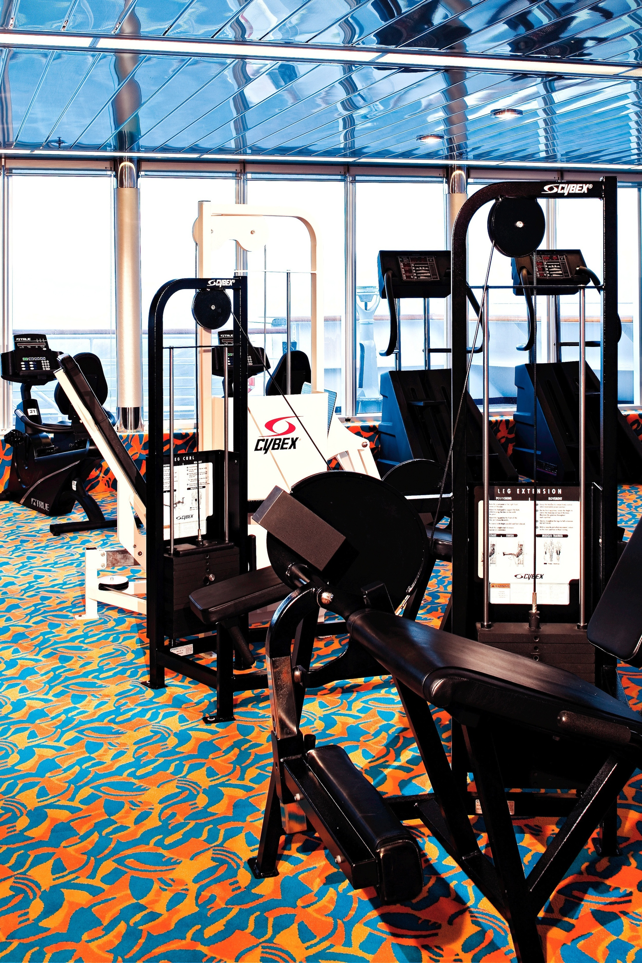Holland America Line Vista-Class Interior Gym 4.jpg