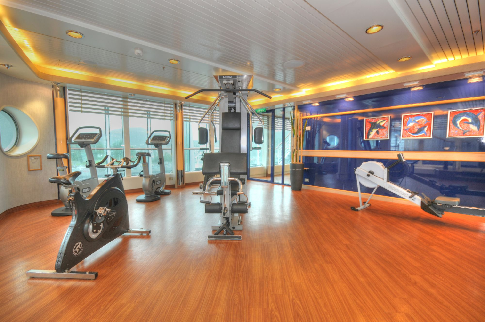Hurtigruten Cruise Lines MS Fram Interior Fitness Room 3.jpg