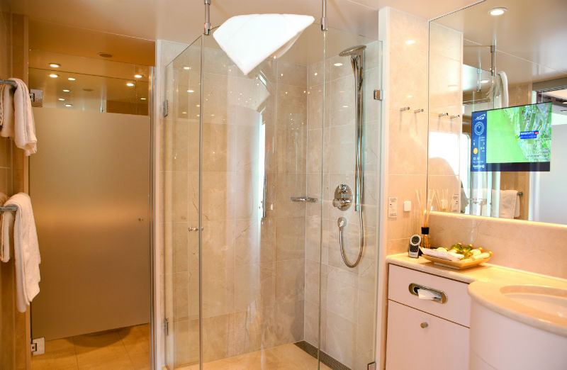 Cruise & Maritime Voyages Astor Accommodation Senator Suite Bathroom.jpg
