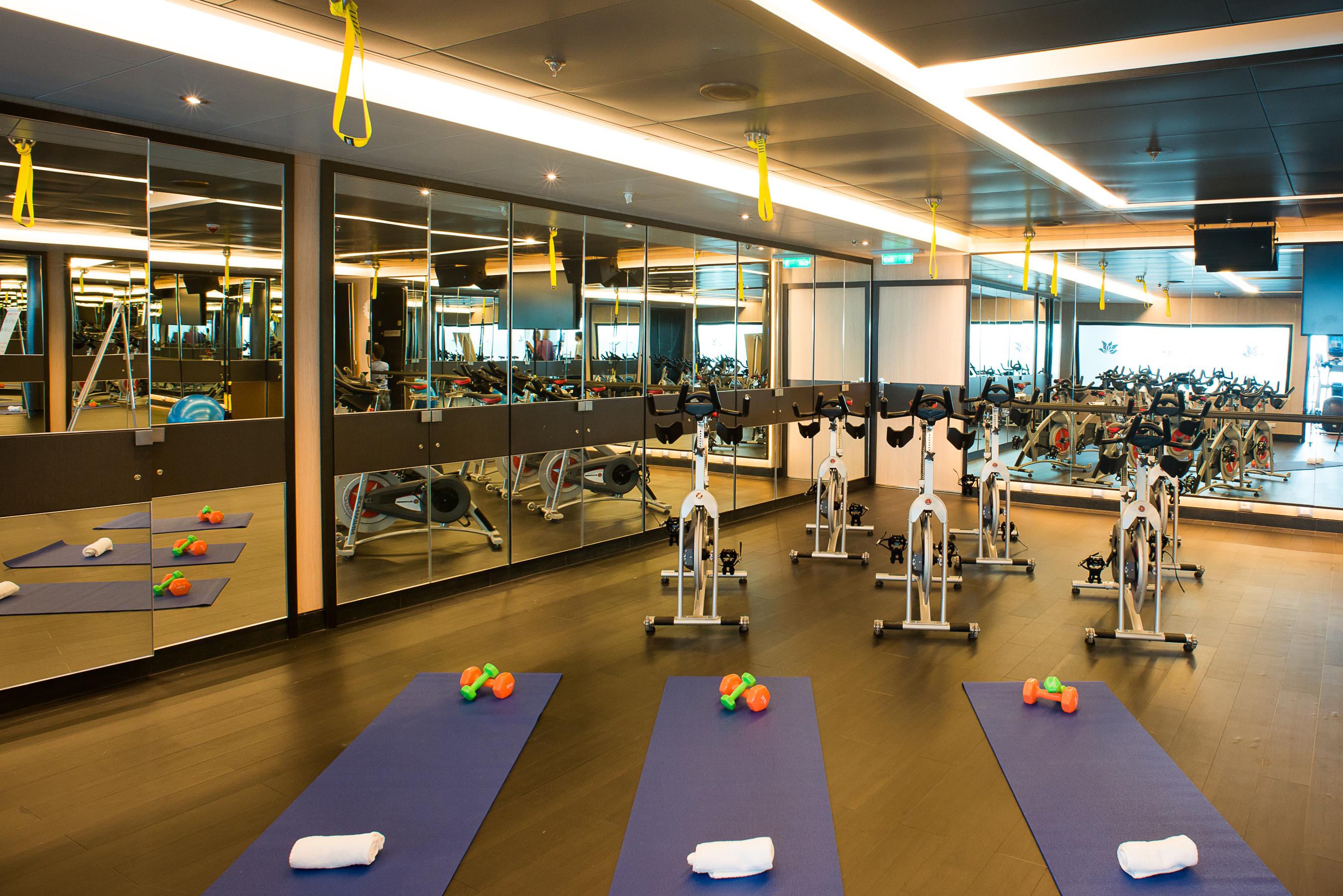 Princess Cruises Royal Class Interior fitness centre.jpg