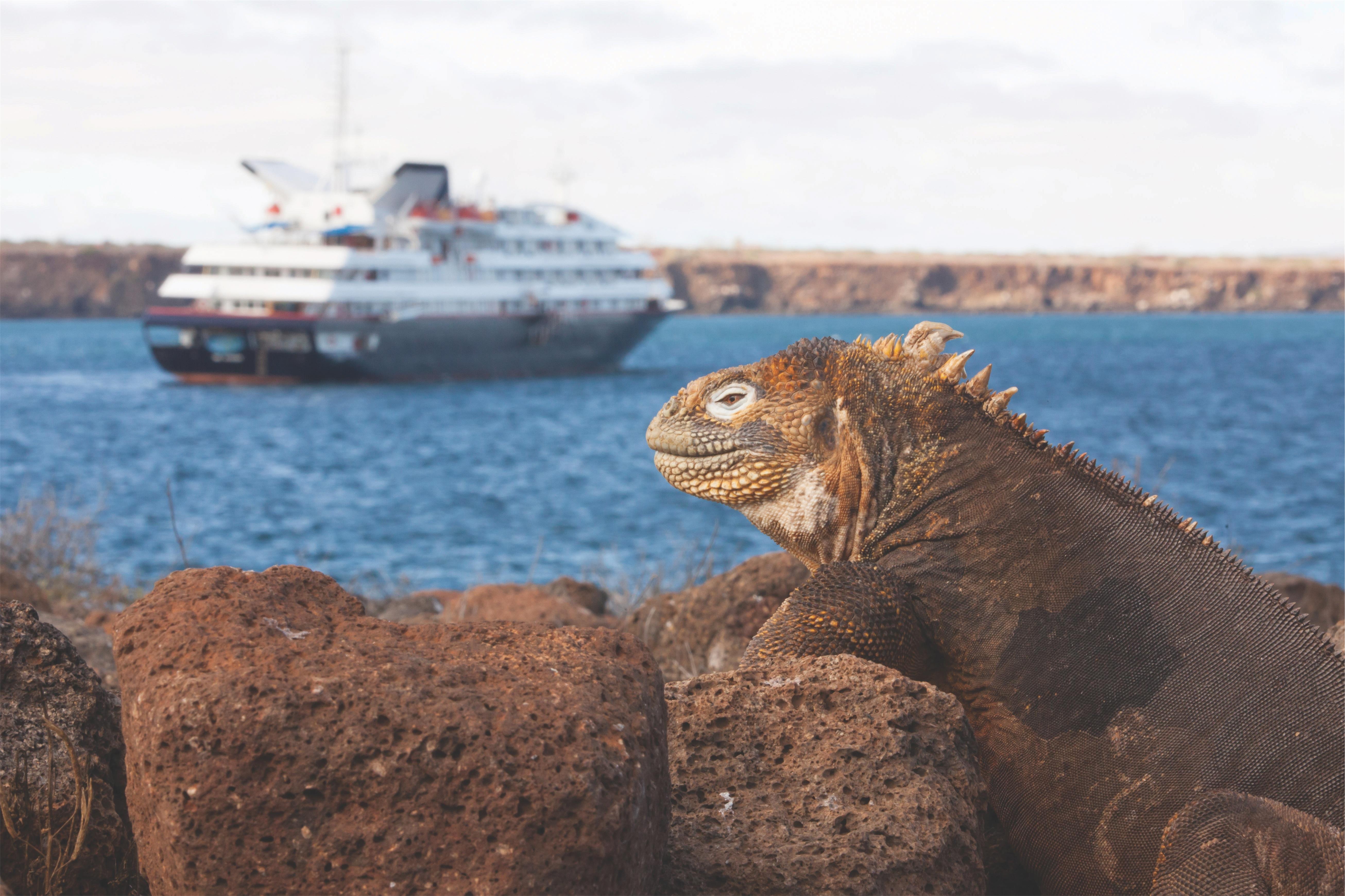 Silversea Cruises Silver Galapagos Exterior Expedition Ship 6.jpg