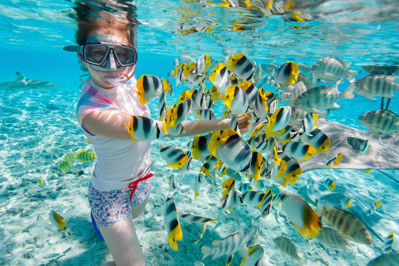 RCI_snorkeler_with_fish_Mirum_exclusive_243194509.jpg