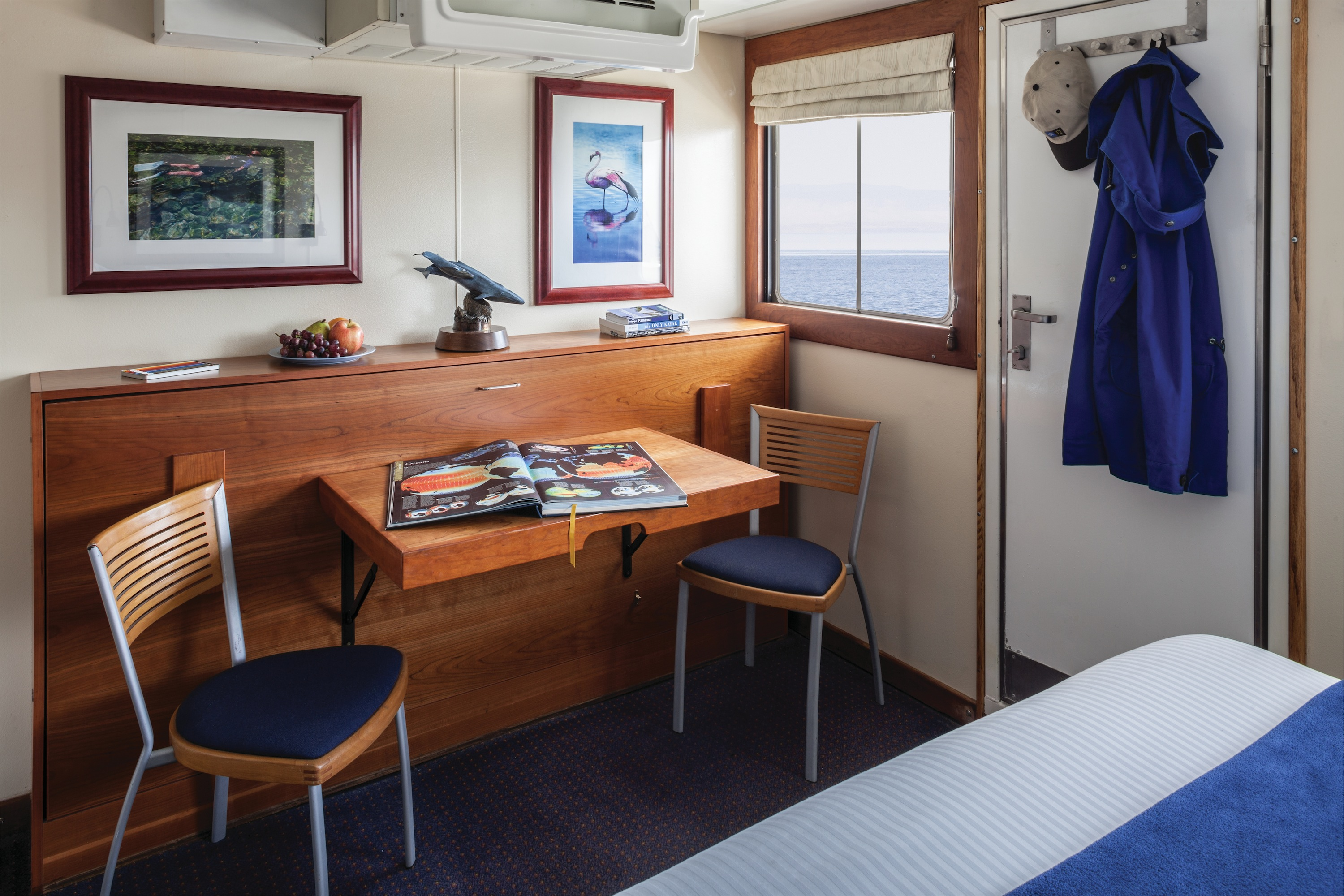 Lindblad Expeditions National Geographic Sea Bird & National Geographic Sea Lion Accommodation Category 3 Desk.jpg