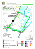 The new forest moses dock loop walking route