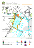 The new forest eight acre pond walking route