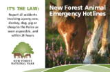 The new forest animal emergency hotline card