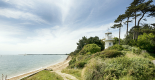 lepe-walking1-550.jpg