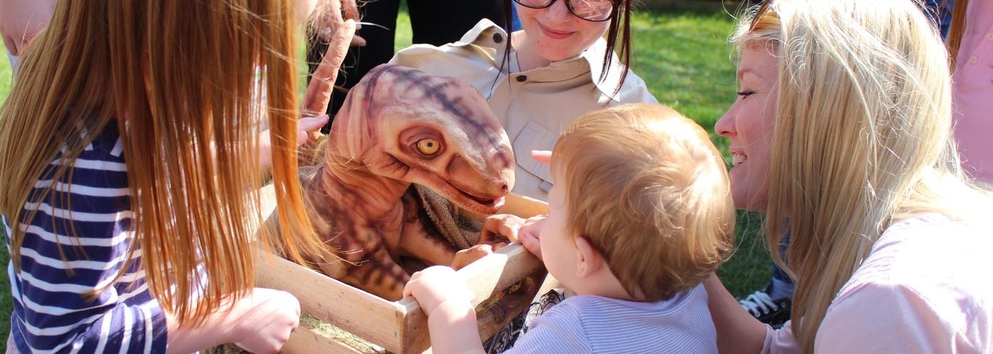 Rory Baby DInosaur Paultons.jpg