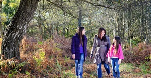 New Forest Walking Festival Family Woodland.jpg