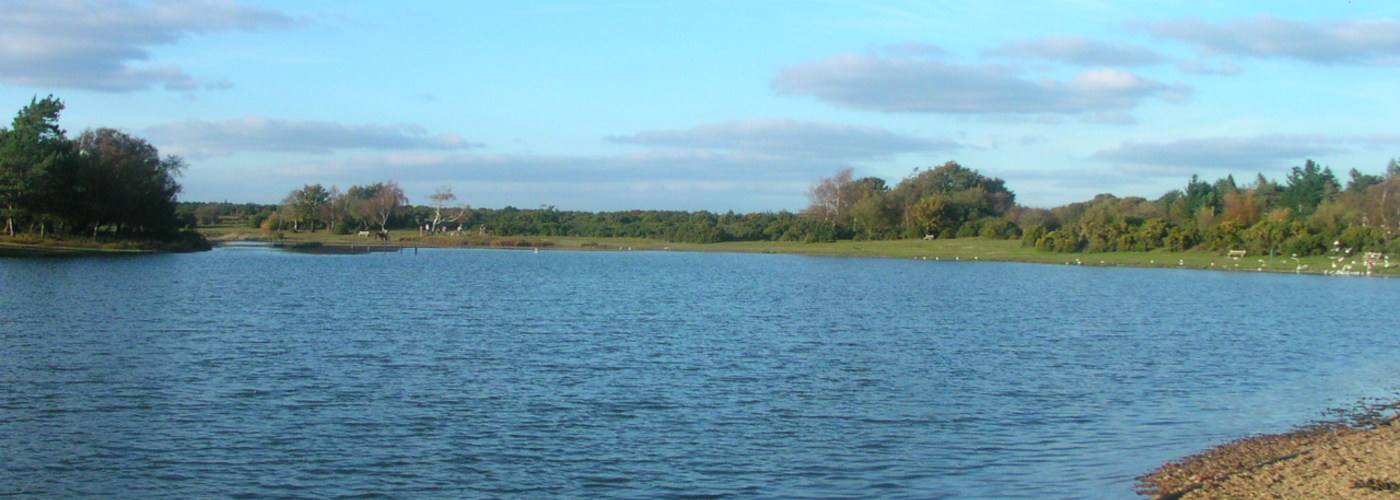 Hatchet Pond.JPG