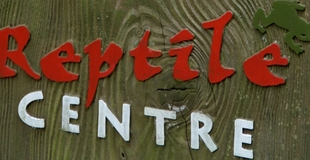 New Forest Reptile Centre Cover.jpg
