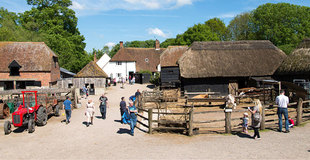 Manor farm pic.jpg
