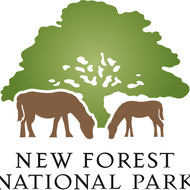 New Forest lLogo.jpg