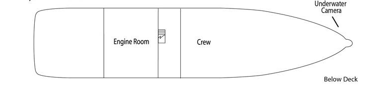 UnCruise Wilderness Explorer Deck Plans Below Deck.png