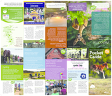 New forest pocket guide 2017